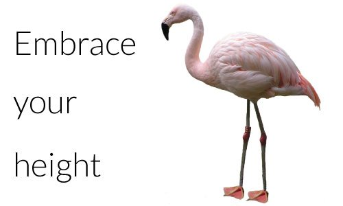 Embrace your height