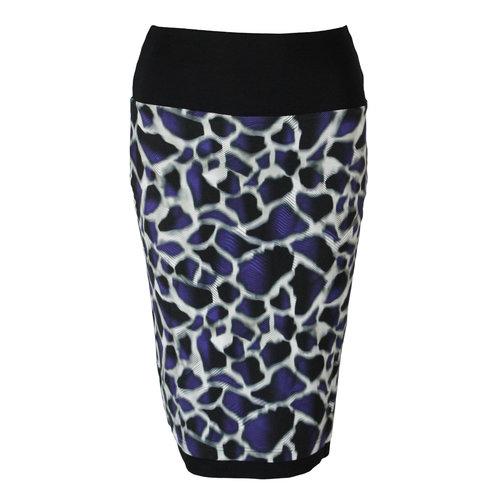 Chiarico Chiarico Skirt Raff Print