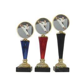 Karate standaard goud of zilver