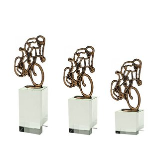 BEG 560 Trofee wielrennen