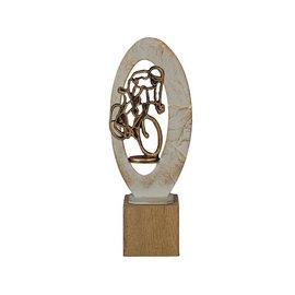 BEH 560 Trofee wielrennen op hout
