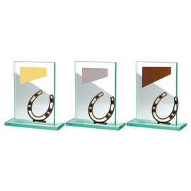 BW513-572 glazen standaard hoefijzer