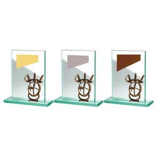 BW513-570 glazen standaard schermen