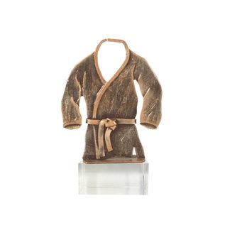 Bel193 judo op glas