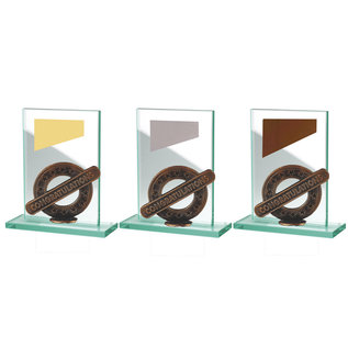 BW513  glazen standaard congratulations