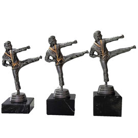 standaardje karate