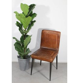 Leather dining chair healey