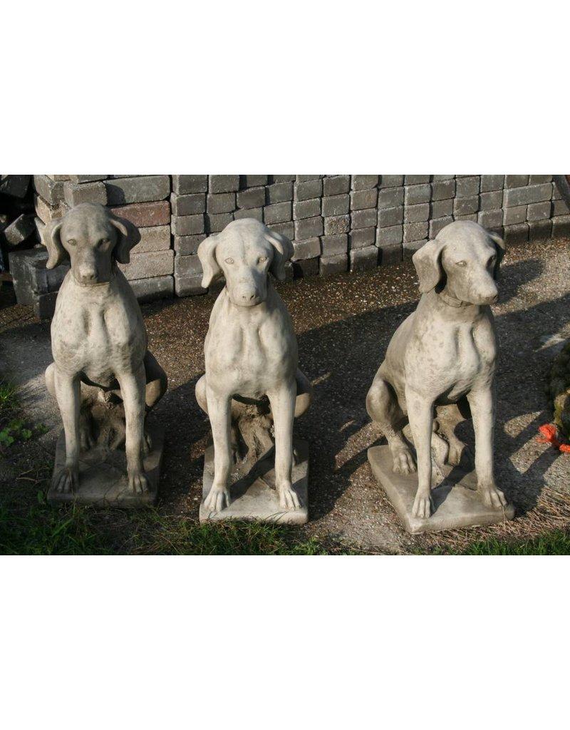 Betonnen Honden Labrador Standenhond Jachthond