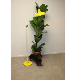 Hoogervorst for Anvia Almelo Holland 60 years Floor lamp