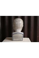Mega large Fowler phrenology head