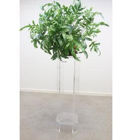 Plexiglass high etagere or plant table