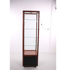 Glass display case on wheels with lighting