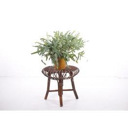 Bamboe krukje bijzettafeltje