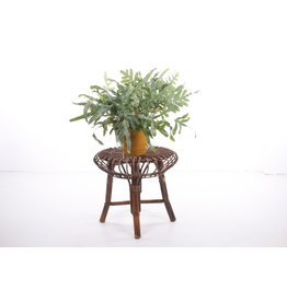 Bamboo stool / side table