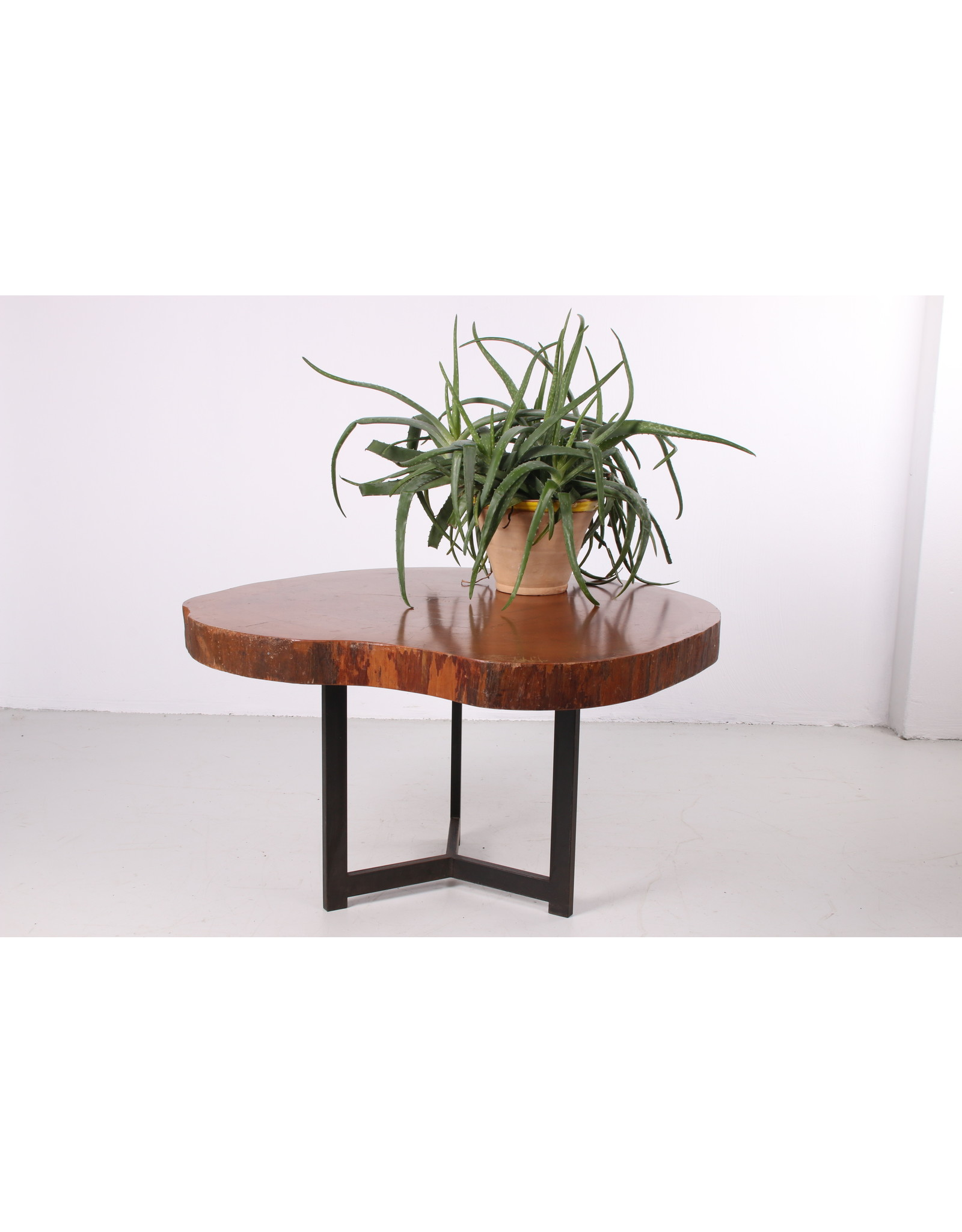 Vintage Tree Trunk Coffee Table With Metal Base 1960s Timeless Art Nl
