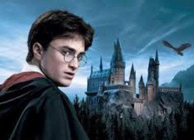 Officieel gelicenseerde Harry Potter Tassen