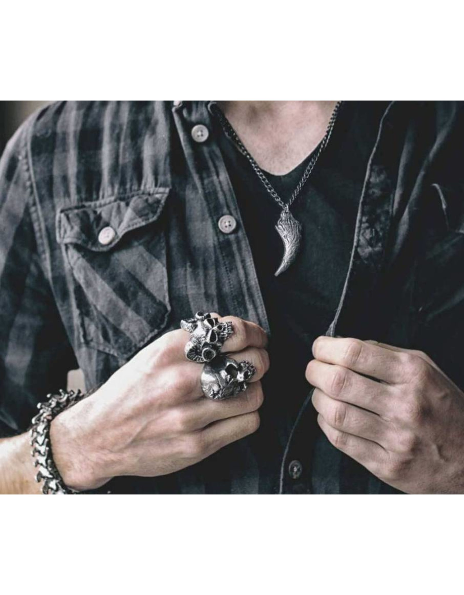 Alchemy Keltisch,- Viking ,- Gothic accessoires - Froda's Dragon Tooth Alchemy hanger en ketting
