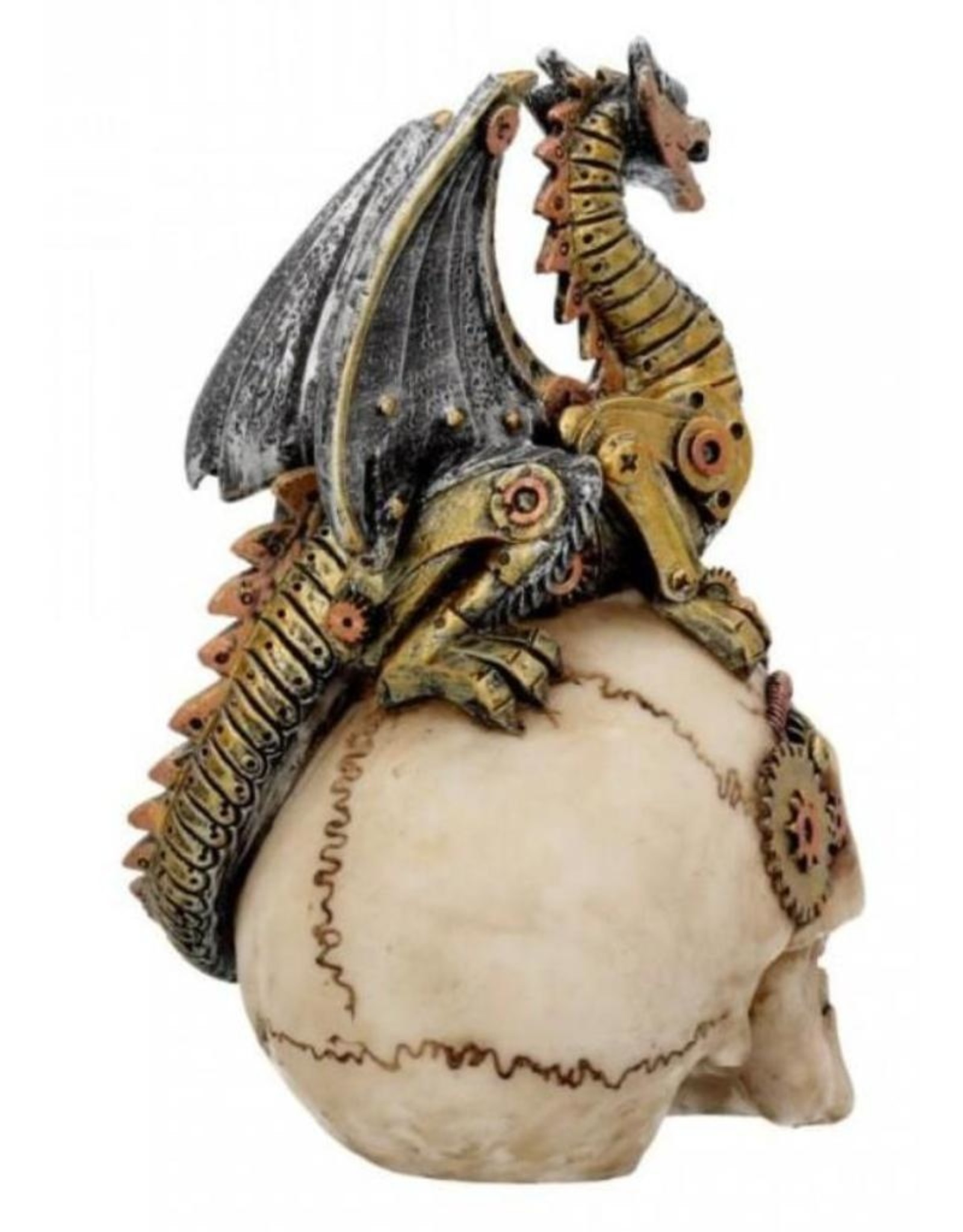 Alator Collectables - Schedel met draak Dragon's Grasp