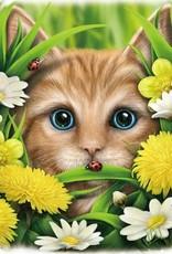 SheBlackDragon 3D Tassen en Rugzakken - Linda M. Jones Summer Cat Rugtas 3D
