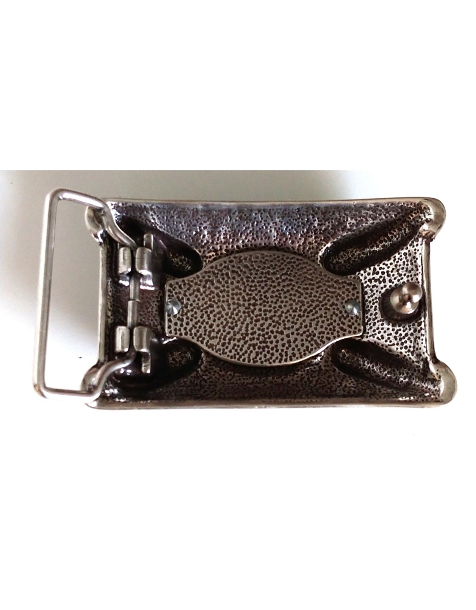 "Leren riemen en buckles - Buckle ""Dragon Claw"""