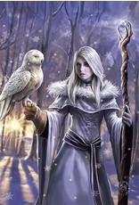 Anne Stokes Fantasy tassen en portemonnees - Anne Stokes 3D portemonnee Winter Owl