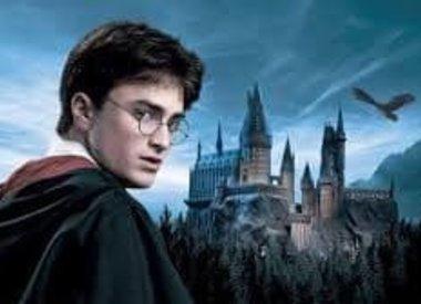 Harry Potter Tassen en portemonnees