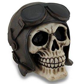 Schedel Helm met Goggles