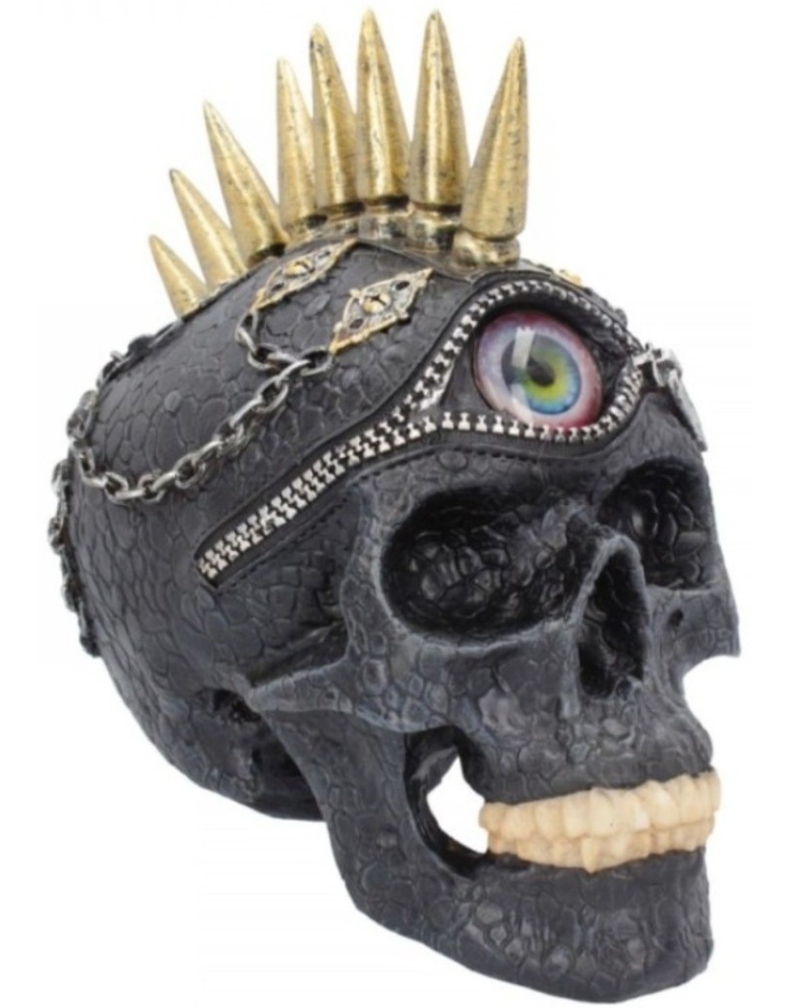 Alator Schedels - Schedel met realistisch oog Eye Opener