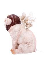 Alator Collectables - Varken met Vleugels beeldje 15,5cm - When Pigs Fly, Nemesis Now