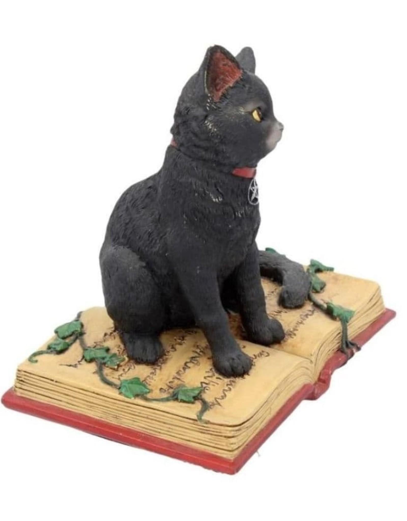Alator Collectables - Fantasy Beeldje Zwarte Kat met open boek Eclipse - Lisa Parker