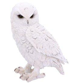 Alator Snowy Watch Witte Uil beeld Large (20cm ) - Nemesis Now