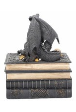 Alator Gothic and Steampunk accessories - Gothic jewelry box Secrets of the Dragon