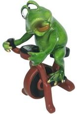 Kikker op Hometrainer beeldje Giftware Figurines Collectables - Frog on the Exercise Bike figurine - 18cm, polyresin