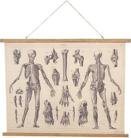 Wandkaart Anatomie Wandkaart Anatomie - 100cm x 75cm