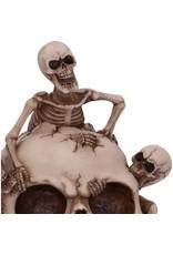 Alator Giftware & Lifestyle - Breaking Free Skelet komt uit schedel ornament