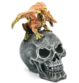 Mythical Dragons Skull with Fiery Dragon