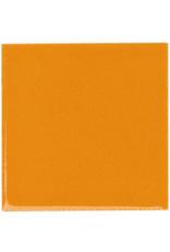 BOTZ 9486 pompoen oranje 200 ml