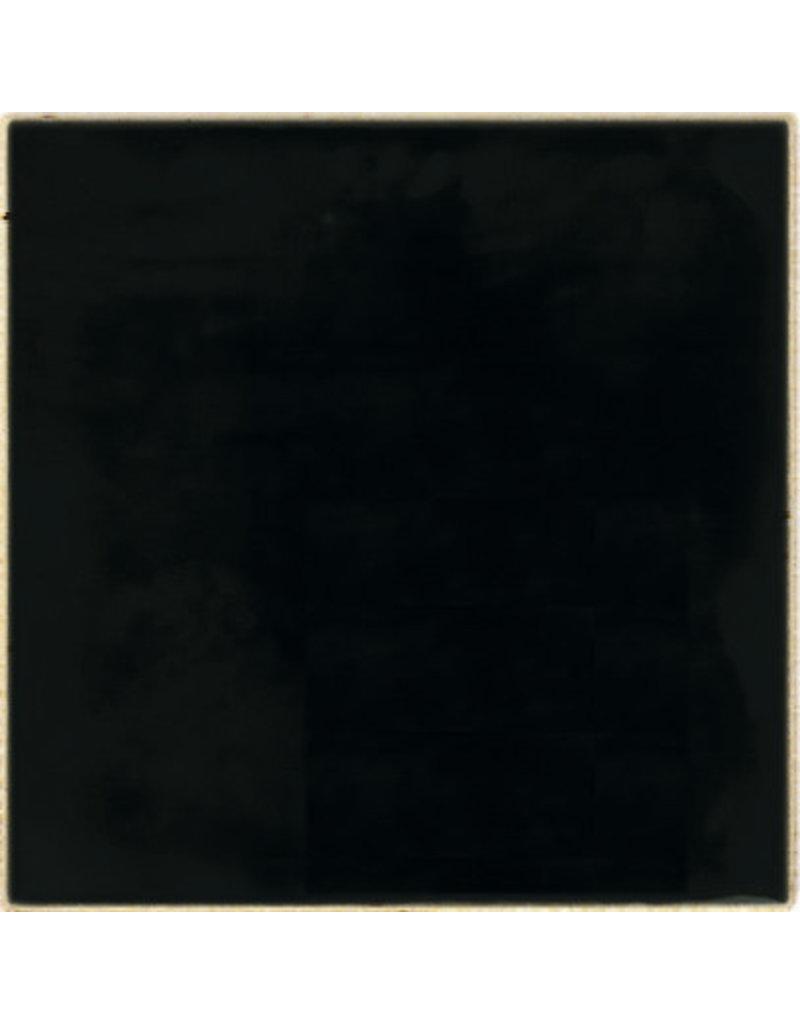 BOTZ 9589 zwart glans 200 ml