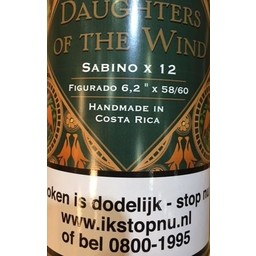 Casdagli Daughter Of The Wind Sabino