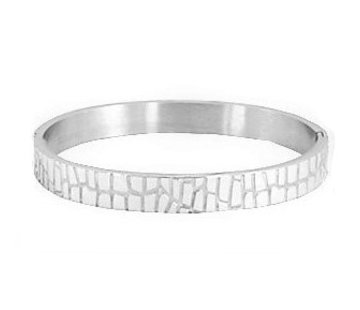 Armband Bangle Crocodile RVS Zilver