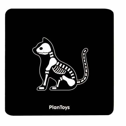 Plan Toys Plan Toys Dierenartsset