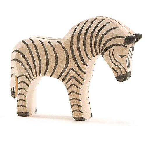 Ostheimer Ostheimer Zebra Groot