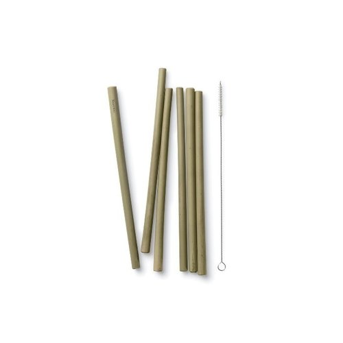 Bamboe rietjes, set 6 stuks