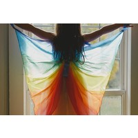 Sarah's Silks zijden elfjes vleugels