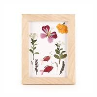 Huckleberry Lijst voor gedroogde bloemen