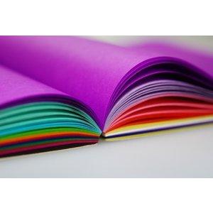Hout & Plezier Zijdevloei papier 240 vel 20 kleuren 16 x 16 cm