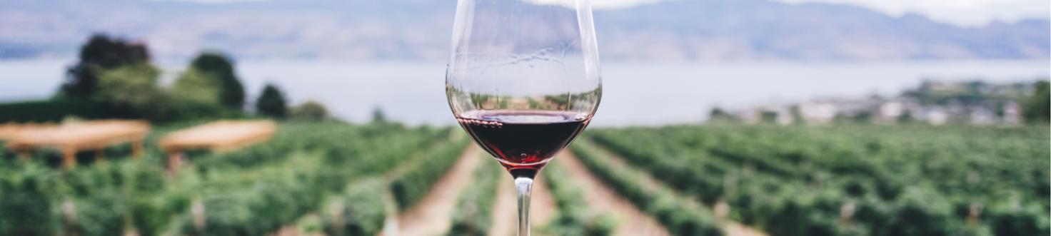 Alle Franse wijnen