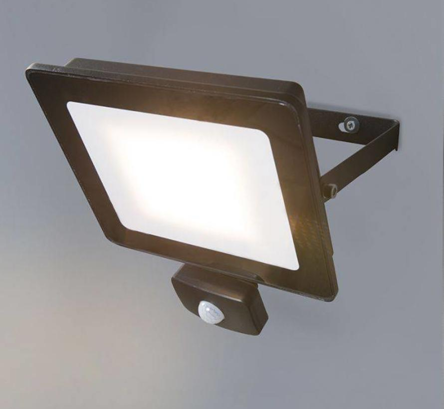 Floodlight LED 30W met Bewegingsensor