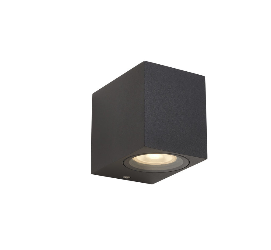 Wandlamp buiten Delmont 1 Zwart