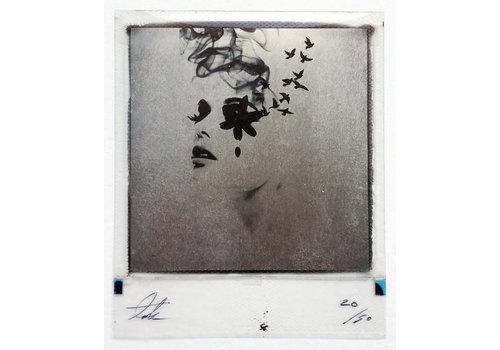 Andrew Millar Smoke & Mirrors, Platinum polaroid